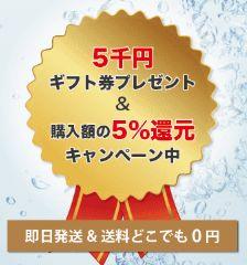 5%引きで5000円ギフト券もらえるキャンペーン